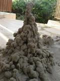 ארמול חול בחצר
