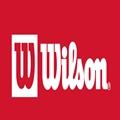 מוצרים של חברת WILSON