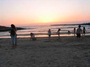 חוף.jpg