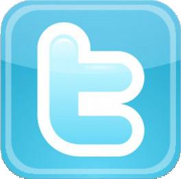 Twitter-Logo-300x293.png